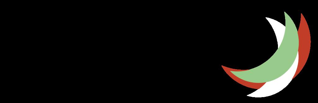 mezz logo-01